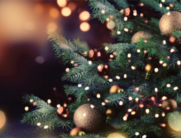 Weihnachten_2018